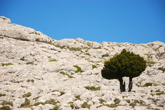 Two jews in mountains Royalty Free Stock Photo