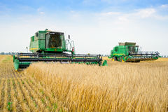 Two John Deere Combine Harvesters Harvesting Wheat in the Field. Royalty Free Stock Photos