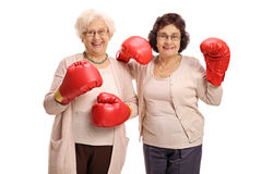 Two joyful mature women with boxing gloves. Looking at the camera isolated on white background Royalty Free Stock Photo