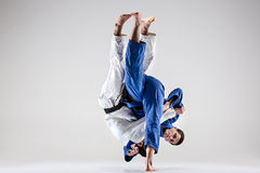 The two judokas fighters fighting men Royalty Free Stock Image