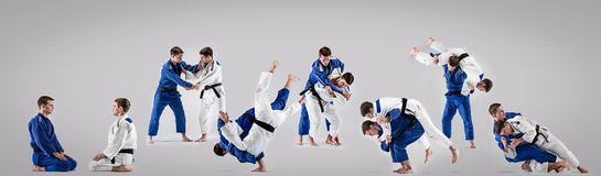 The two judokas fighters fighting men Stock Image