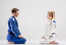 The two judokas fighters posing on gray stock photography