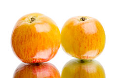 Two juicy apples Royalty Free Stock Image