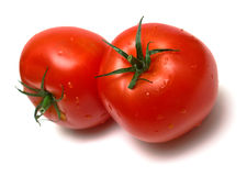 Two juicy fresh tomatoes 2 Stock Photography