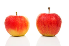 Two juicy red apples Royalty Free Stock Image