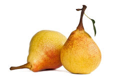 Two juicy ripe pears Stock Images