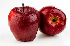 Two juicy ripe red apple in water drops. On a white background Stock Image