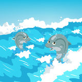 Two jumping dolphins Royalty Free Stock Images