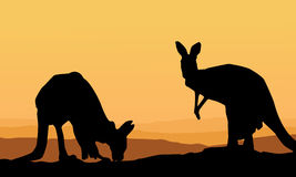 Two kangaroo scenery silhouette collection Royalty Free Stock Image