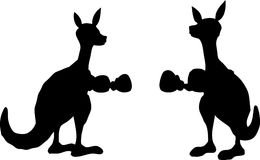 Two kangoroo are boxing. Stock Image