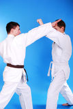 Two karatekas. Stock Photography