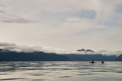 Two kayakers paddling at Prince William Sound, USA Stock Image
