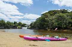 Two kayaks in front of Haruru Falls. New Zealand Royalty Free Stock Images