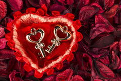 Two keys staying in a heart shaped basket. Two keys staying ina heart shaped basket with dry flowers Stock Photography