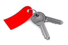 Two keys on white background Stock Images