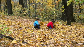 Two kids collecting autumn leaves stock video footage