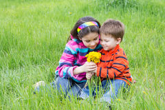 Two kids with dandelions on a meadow Royalty Free Stock Images