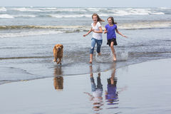 Two kids and a dog at the beach Stock Image