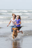 Two kids and a dog at the beach Stock Images