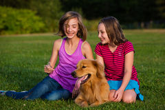 Two kids and a dog Stock Images
