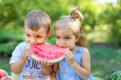 Free Two Kids Eating One Slice Of Watermelon In The Garden. Kids Eat Fruit Outdoors. Healthy Snack For Children. 2 Years Old Girl And Stock Image - 186548441