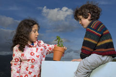 Two kids plant pot Royalty Free Stock Photos