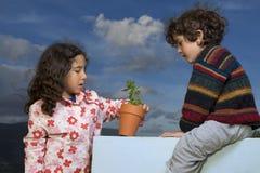 Two kids plant pot royalty free stock photos