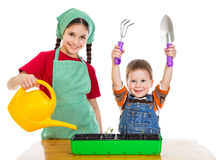 Two kids planting the seedling. Two kids planting a seedling on the desk, isolated on white stock photo