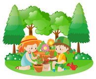 Two kids planting tree in garden Stock Images