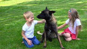 Two kids playing with dog outdoors. Two kids playing with sheppard dog outdoors stock video footage
