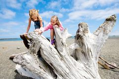 Two kids playing on a sandy beach. Two young girls playing on a large piece of driftwood on a sandy beach outside under a bright blue sky stock images