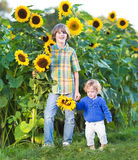 Two kids playing together in a sunflower field Stock Photos