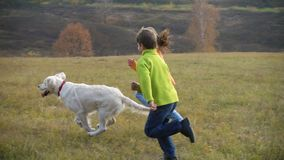Two kids running with golden retriever at field stock footage