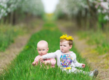 Two kids sit in a grass in an apple garden. Royalty Free Stock Images