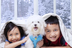 Two kids and their puppy lying under blanket Stock Photos