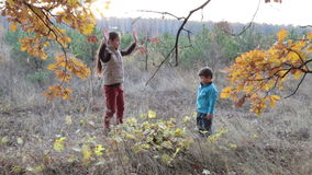 Two kids throwing autumn leaves stock footage