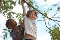 Two kids on a tree Stock Image