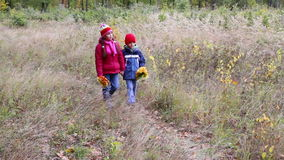 Two kids walking on autumn forest with yellow leaves stock video footage