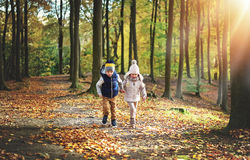 Two kids wandering in the autumn forest Stock Photography