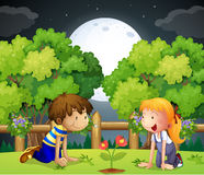 Two kids watching the growing plant. Illustration of the two kids watching the growing plant Stock Photos
