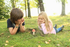 Two kids watching red toadstool royalty free stock photos