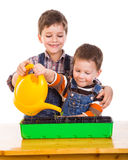 Two kids watering the seedling Stock Photo