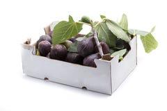 Two kilogram fig Stock Photo
