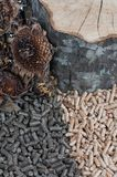 Two kind of pellets Royalty Free Stock Images