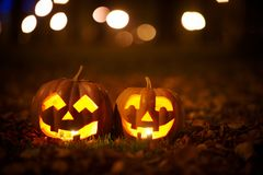 Two Kind Halloween Pumpkins in the park Royalty Free Stock Image