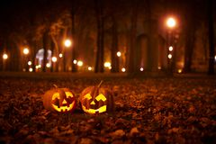 Two Kind Halloween Pumpkins in the park Stock Photography
