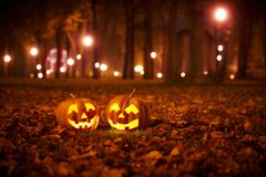 Two Kind Halloween Pumpkins in the park Stock Image