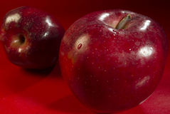 Two of a kind. Two red apples on red table royalty free stock photos