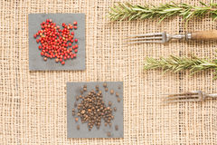 Two kinds of pepper on dark plates with rosemary and antique for. Two kinds of peppercorns on dark plates with rosemary and antique forks. Red and black pepper Royalty Free Stock Photography
