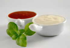 Two kinds of sauces Royalty Free Stock Photo